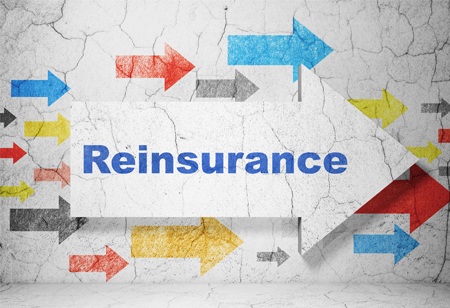 Why Reinsurance is Inevitable for the Stability of Insurance Industry